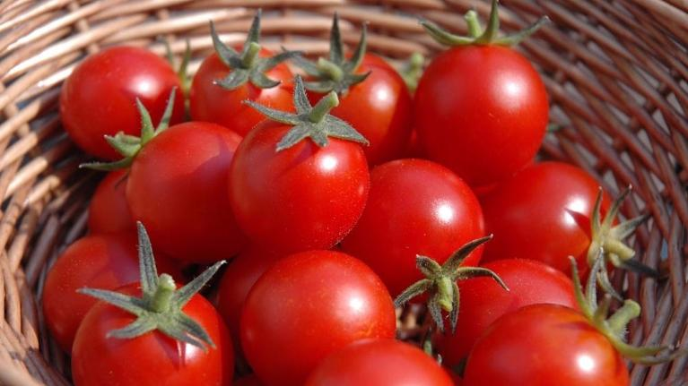 basket of tomatoes | dentist in flowery branch ga